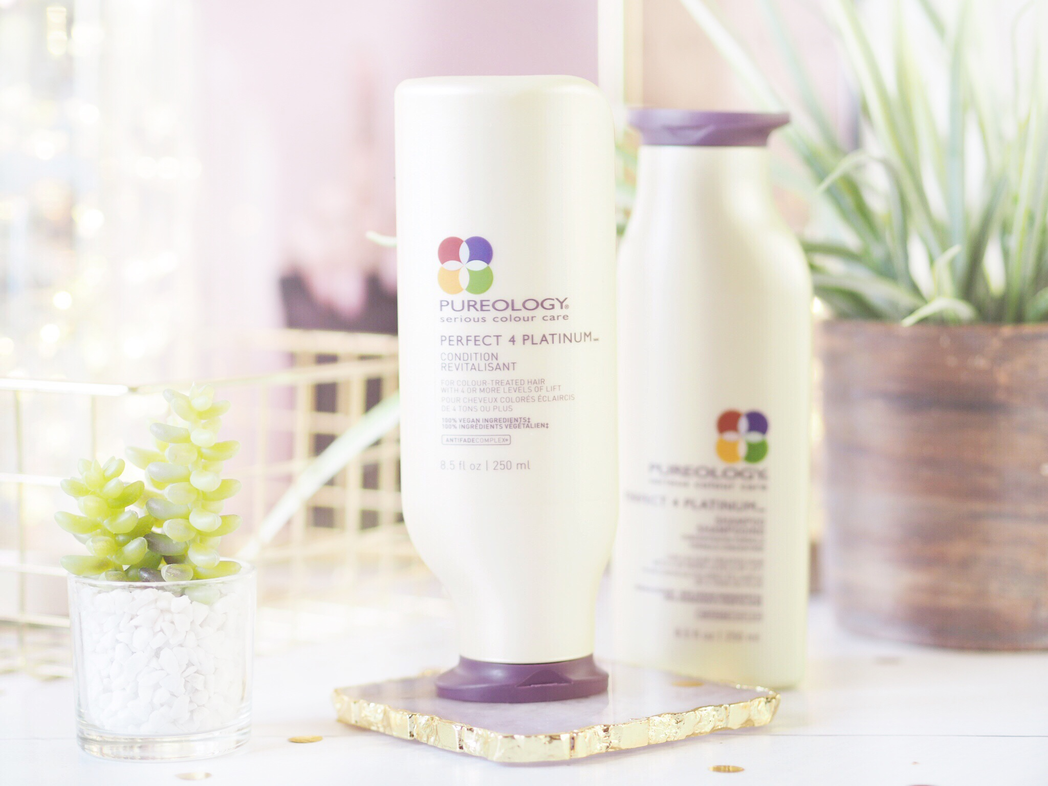Pureology Perfect 4 Platinum Shampoo & Conditioner.