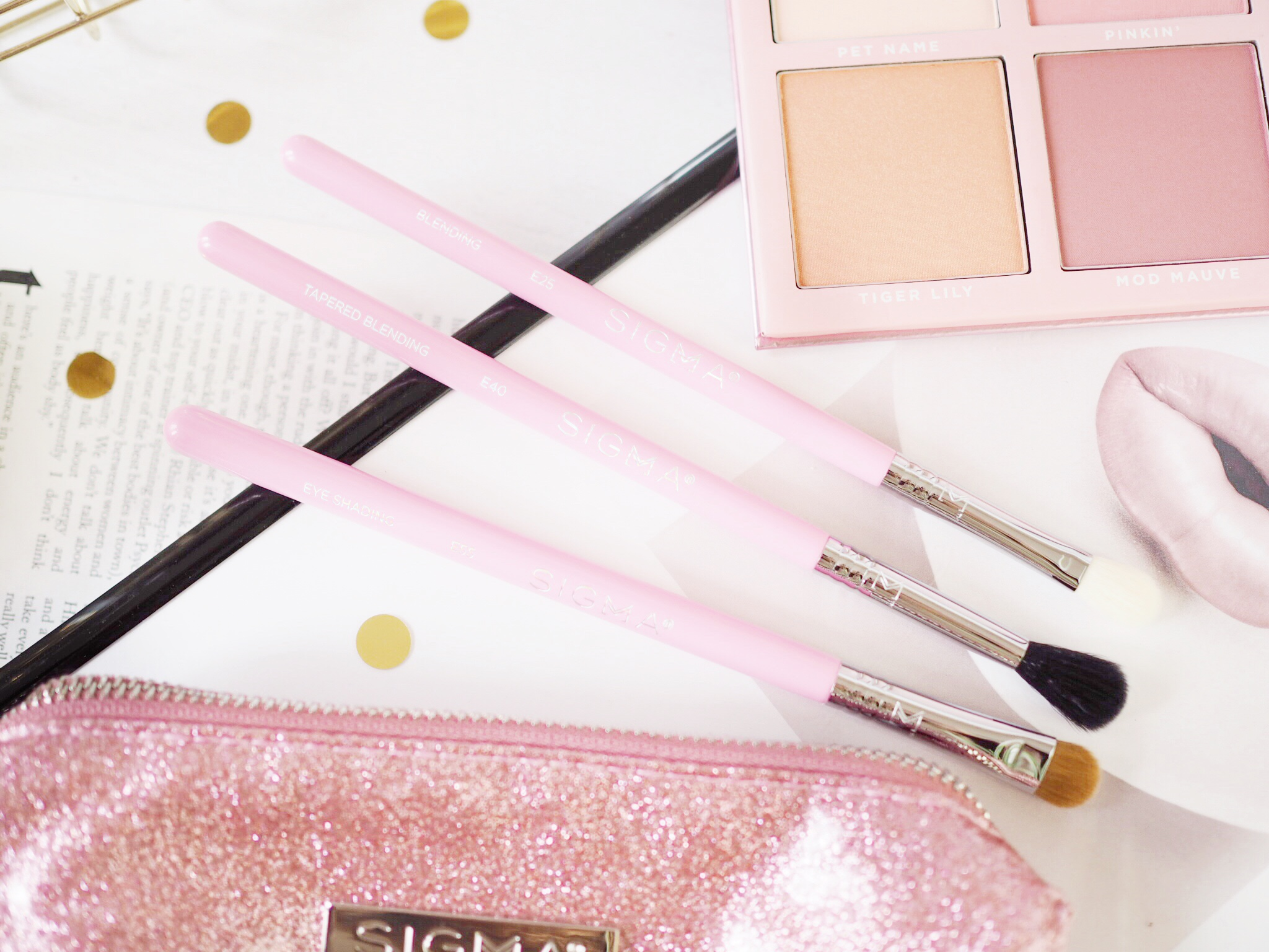 Passionately Pink Brush Set Review