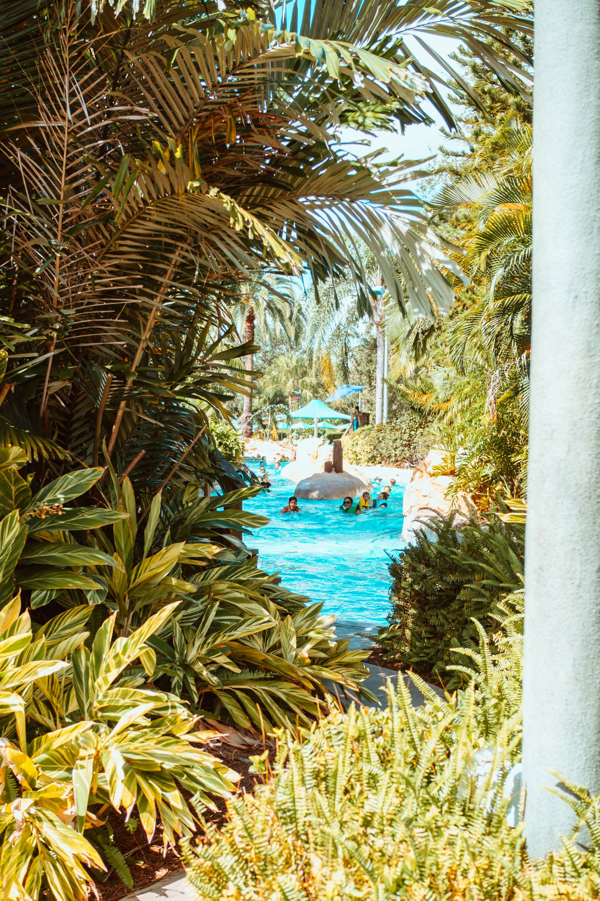 lazy river at Aquatica