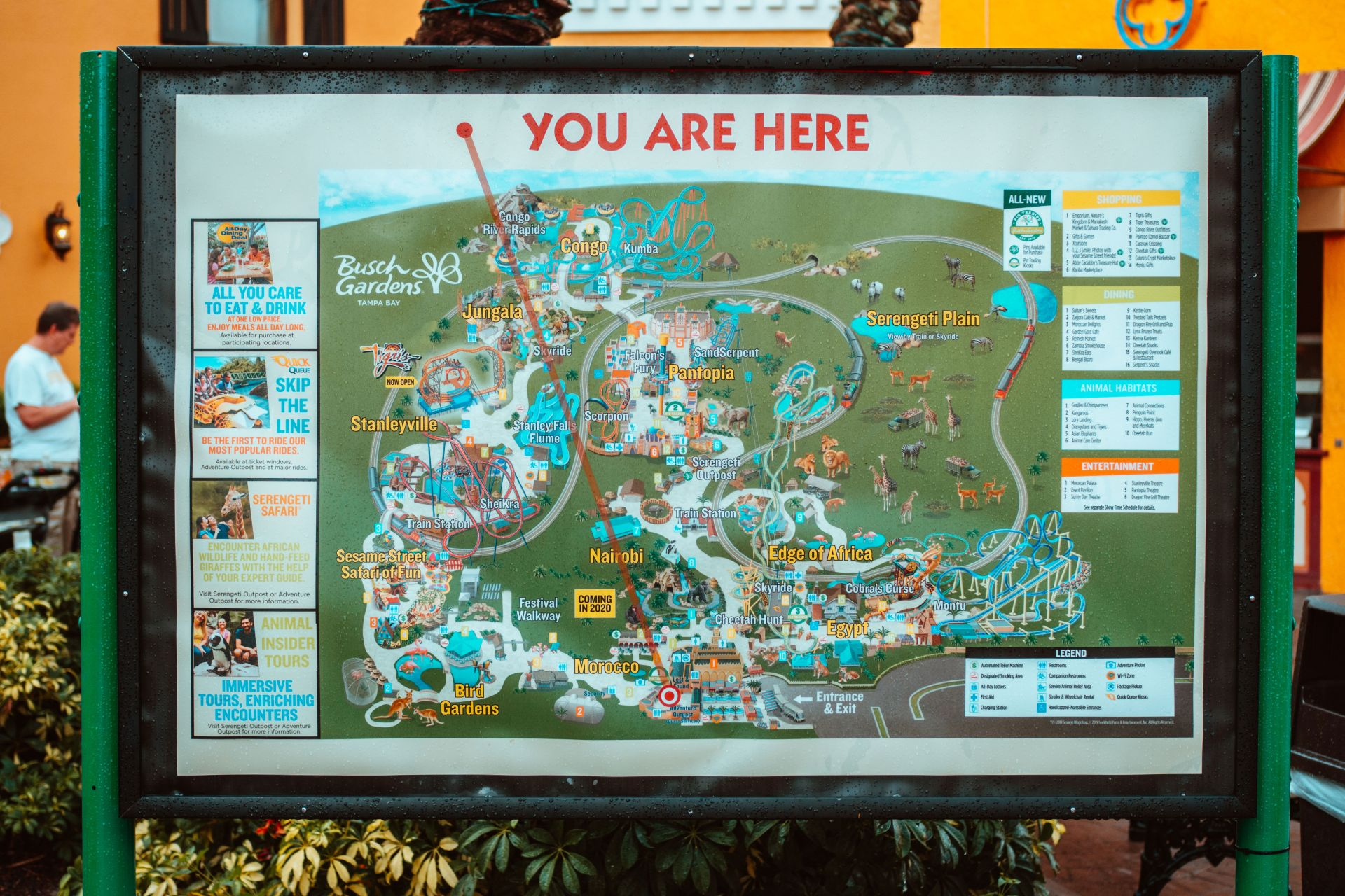 Busch Gardens Review